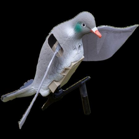 Billede til varegruppe Lokkefugle